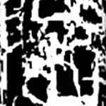 03 - Black